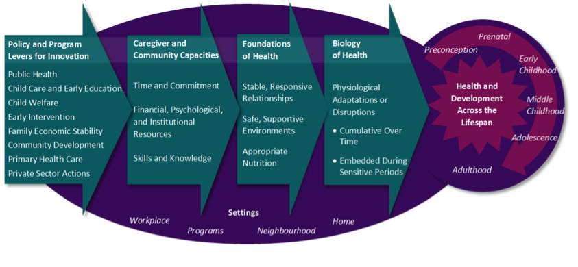 Child wellbeing integrated in the curriculum | Hekupu